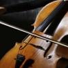 13938__violoncello