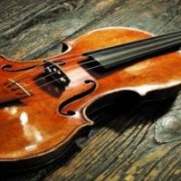 14537__violino