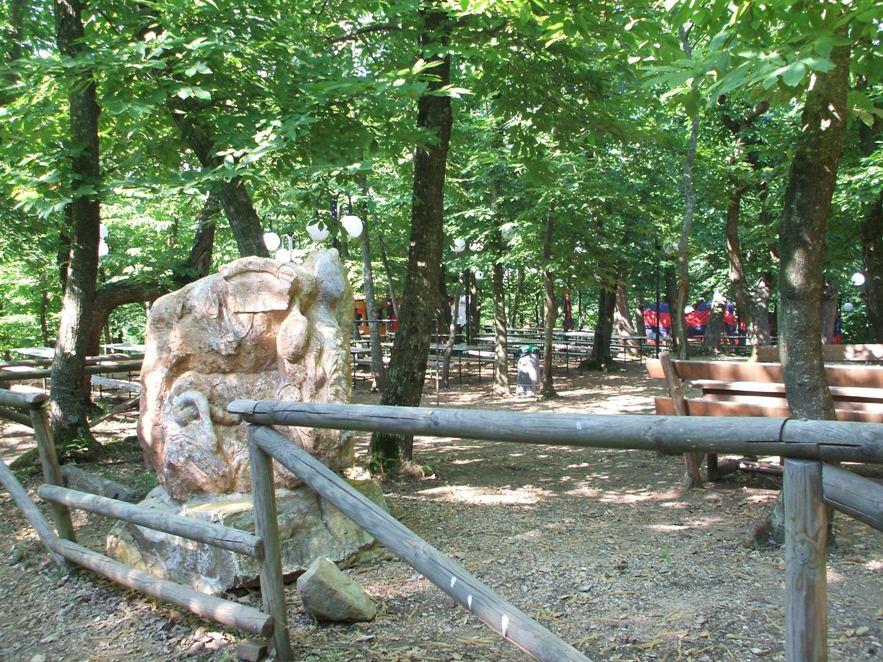 Parco 1