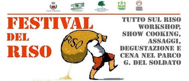 16576__festival+del+riso_650x300