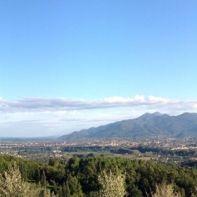 16579__panoramica+un+sorso+di+toscana+classica