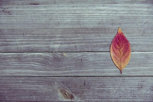 autunno_foglia_tavola_tavolo-min