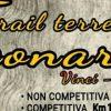 19137__trail+terre+di+leonardo_650x300