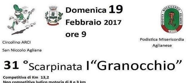 19384__scarpinata+I+granocchio