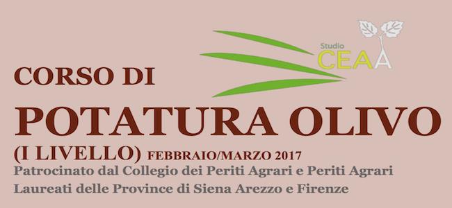 corso-potatura-olivi