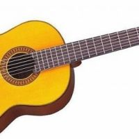 20228__chitarra