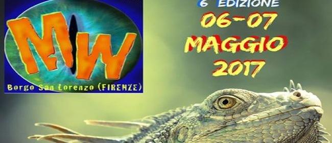 20678__FI_Borgo+San+Lorenzo_Mugello+Wild