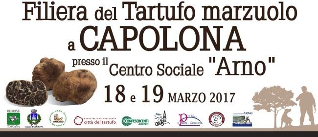 capolona_filiera del tartufo marzuolo_immagine di copertina