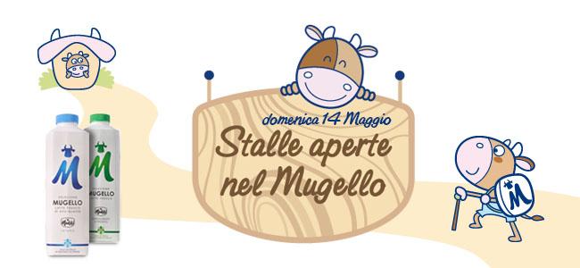 Stalle Aperte Mugello_650x300
