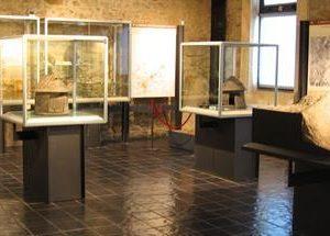 21895__MuseoIsidoroFalchi