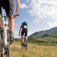 22274__mountain+bike_650x300