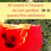 Gli eventi in Toscana da non perdere questo fine settimana