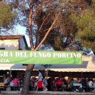 festa san pietro cascia_www.eventiintoscana.it-650x300