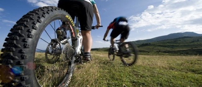 22699__mountain+bike