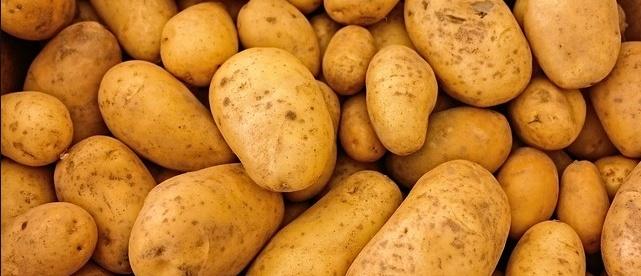 23281__patate