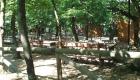 Serrazzano estate 3
