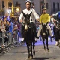 23927__palio+dei+ciuchi+carmignano