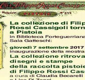 24181__cassigoli