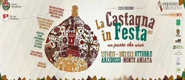 24367__castagna+in+festa