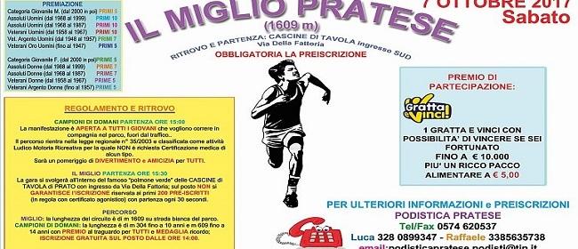 24487__il+miglio+pratese