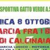 24494__marcia+fra+i+boschi+di+calcinaia