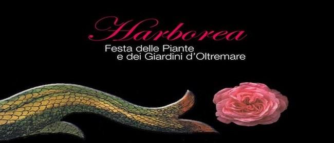 24552__harborea