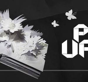 26547__pop-up-la-magia-dei-libri