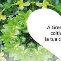 28508__green+art