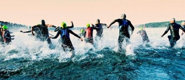 29162__triathlon
