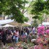 29292__mostra+mercato+di+piante+e+fiori+firenze+2018
