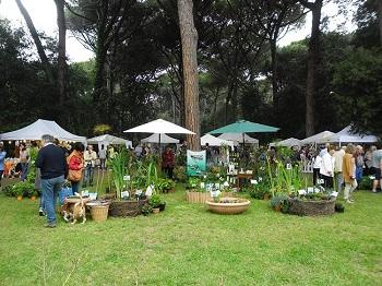 country-garden-show-2018