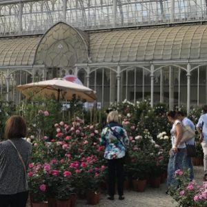 mostra mercato piante e fiori_firenze-eventiintoscana.it