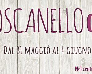 29760__toscanello+d%27oro+pontassieve