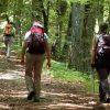 30392__trekking