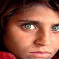 30467__steve-mccurry-la-ragazza-afghana-peshawar-pakistan-1984