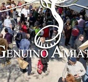 30804__genuino+amiatino