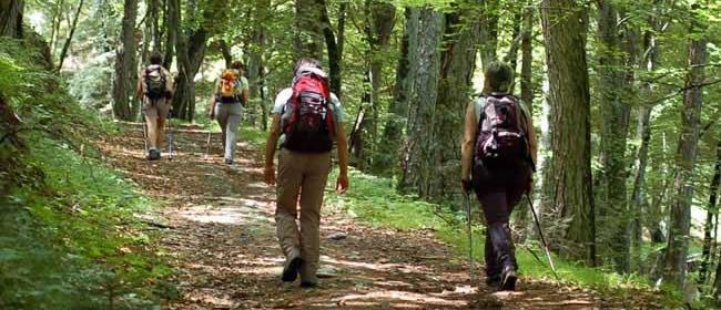 Trekking Via Francigena – Monteriggioni – Siena – Monteriggioni (Siena)