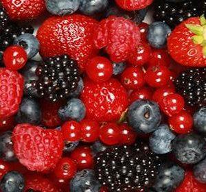 24257__frutti+di+bosco_650x300