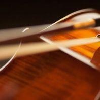33422__violino4