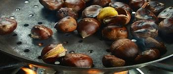 rassegna castanicoltura cutigliano pistoia