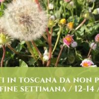 Gli eventi in Toscana da non perdere_12-14 aprile
