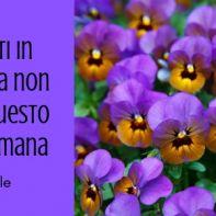 eventi in Toscana 5-7 aprile