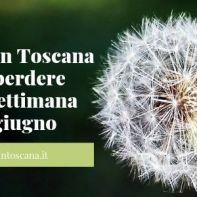 Gli eventi in Toscana da non perdere nel fine settimana 21-23 giugno
