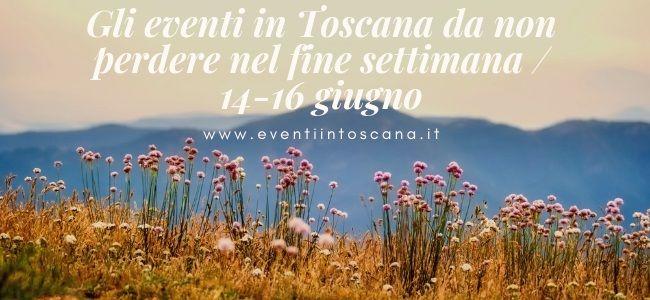 Gli eventi in Toscana da non perdere nel fine settimana _ 14-16 giugno