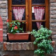 Gli eventi in Toscana da non perdere questo fine settimana _ 11-13 ottobre
