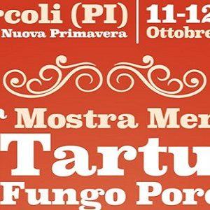 mostra mercato tartufo porcino forcoli