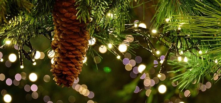Mercatino di Natale – Piazza Cavour, Livorno
