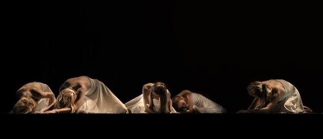 Metamorphosis – Teatro Manzoni, Pistoia (Pistoia)