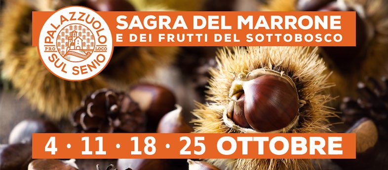 —annullata ultima data— Sagra del marrone e dei frutti del sottobosco – Palazzuolo (Firenze)