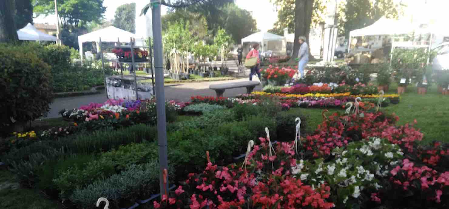Pescia Antiqua. Antiquariato, fiori e piante – Pescia (Pistoia)
